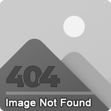 Ladies Polo Shirts Custom Design Made From Cotton